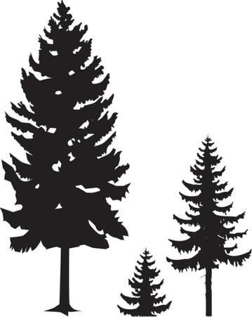 spruce silhouette Stock Vector - 421970