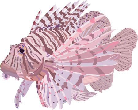 ichthyology: Lionfish