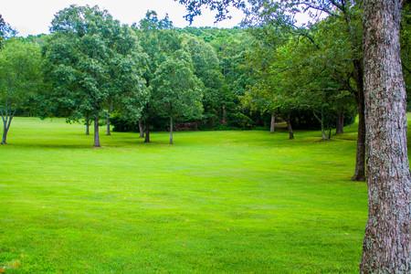 緑の景観 写真素材