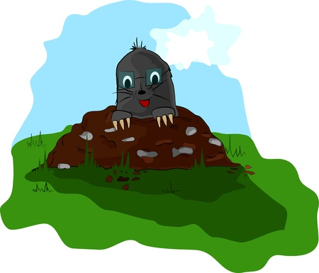 molehill: a small mole with glass on the meadow molehill Illustration