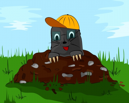 molehill: a small mole with glass and cap on the meadow molehill