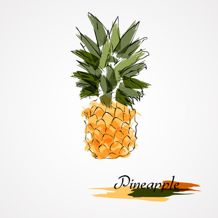 Hand drawn pineapple ripe fruit on light background Vectores