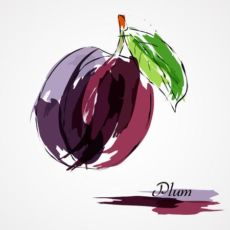 Hand drawn vector purple plum ripe fruit on light background