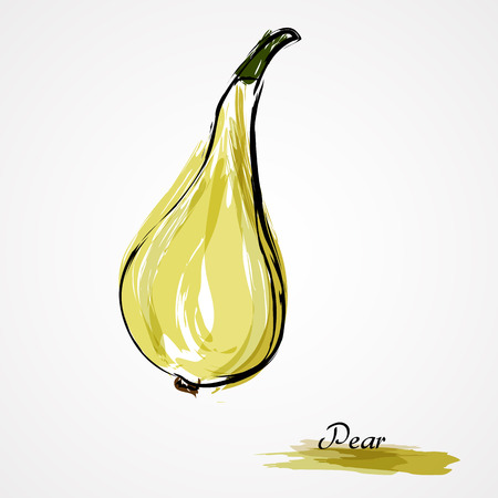 Hand drawn vector pear fruit on light background