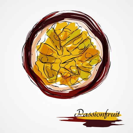 passion ecology: Hand drawn vector purple ripe part of passionfruit fruit on light background
