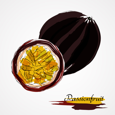 passion ecology: Hand drawn vector purple ripe whole and part of passionfruit fruit on light background