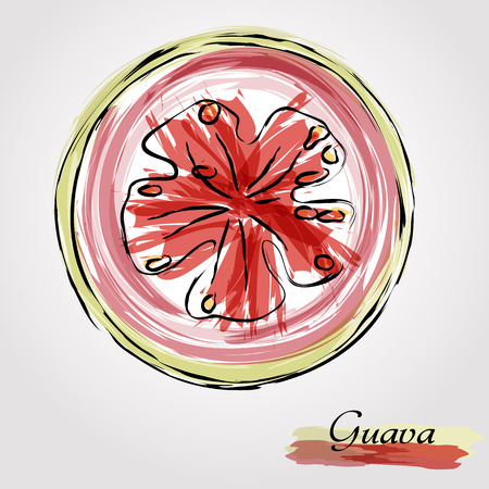 grope: Hand drawn vector ripe half of, slice guava, gujava fruit on light background