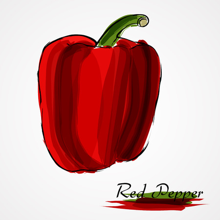 red pepper: Hand drawn vector ripe red pepper, paprika on the light background Illustration