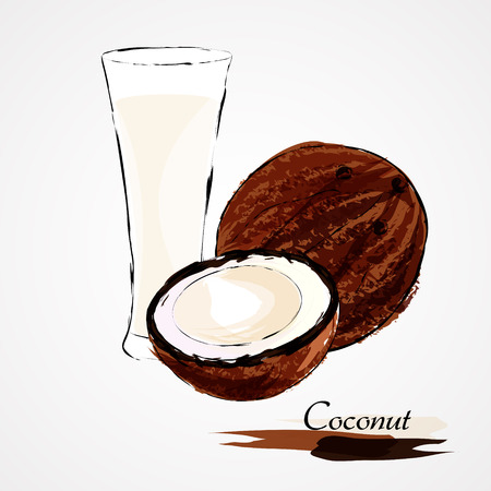 Hand drawn vector ripe coconut fruit and milk on light background