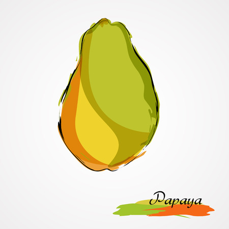 grope: Hand drawn vector ripe papaya fruit on light background