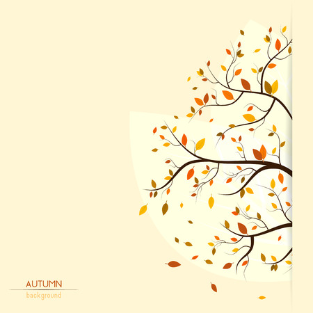 fall, autumn background with colorful leaves on tree