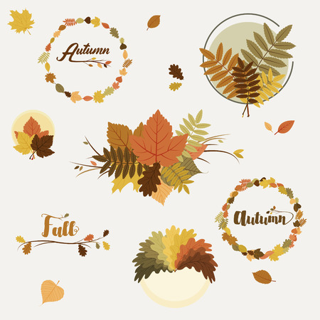 fall foliage: fall, autumn badges, decoration with colorful leaves on light background
