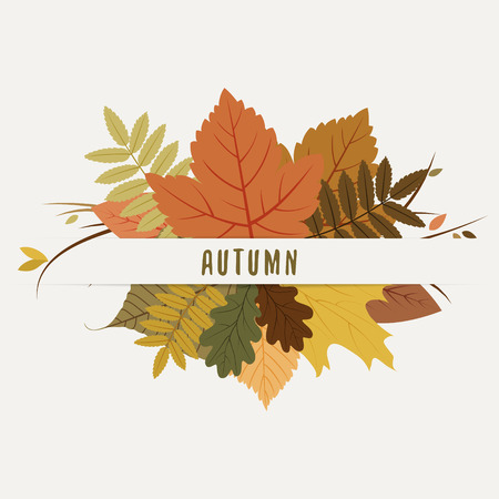 fall, autumn badges, decoration with colorful leaves on light background