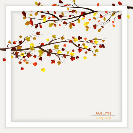 fall, autumn frame decoration background with colorful leaves on trees
