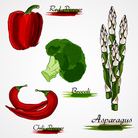 Set of  ripe whole vegetables red pepper, chili, asparagus, broccoli, and zucchini on light background Vectores