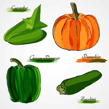Set of  ripe whole vegetables cucumber, pumpkin, green pepper and zucchini on light background