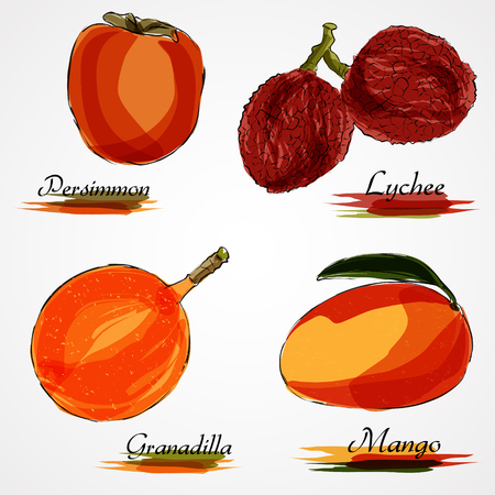 persimmon: Set of ripe whole fruits, mango, lychee, persimmon and granadilla on light background