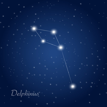 Delphinus constellation at starry night sky