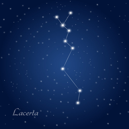Lacerta constellation at starry night sky
