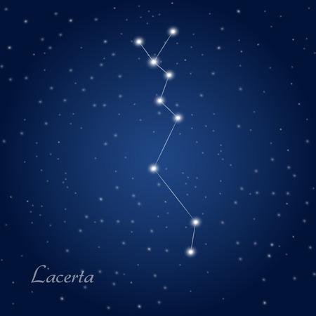 starry night: Lacerta constellation at starry night sky