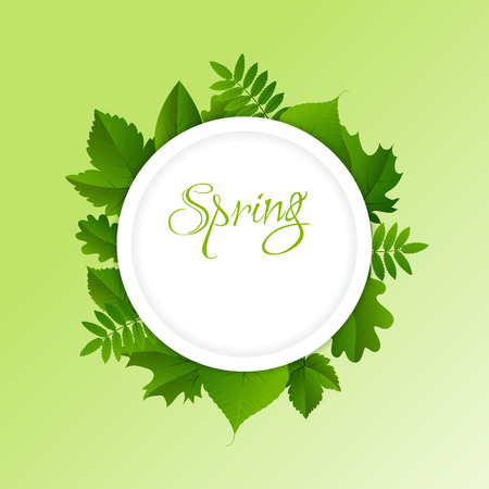 Spring white circle frame with green different leaves on light green background Vectores