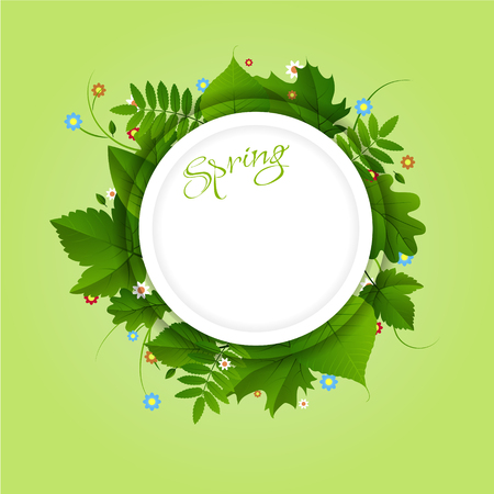 advertise: Spring white circle frame with green different leaves and flowers on light green background