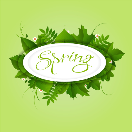 Spring white circle frame with green different leaves and flowers on light green background
