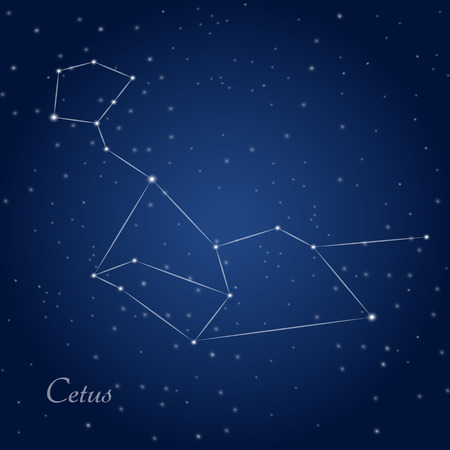 Cetus, whale, constellation at starry night sky