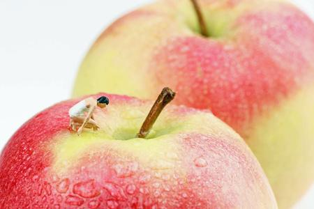 curious miniature woman on an apple
