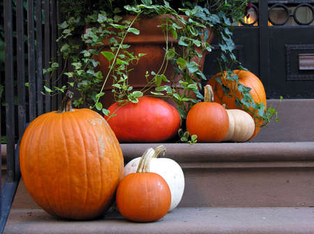 stoop: Various pumpkins decorate a city buildings steps