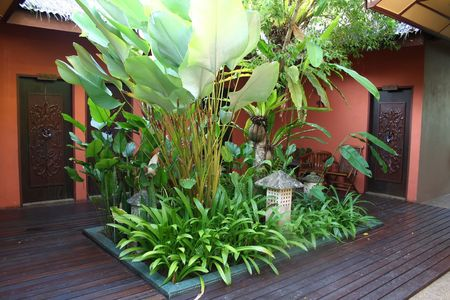 courtyard: Bali-style courtyard, with plants Stock Photo