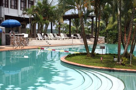 palmtrees: Swimming pool in the tropics, with palmtrees and lush greenery