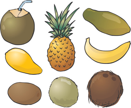 Illustration of tropical fruits, hand-drawn look: young green coconut, pinapple, papaya, mango, banana, kiwi, guava, coconut Vector