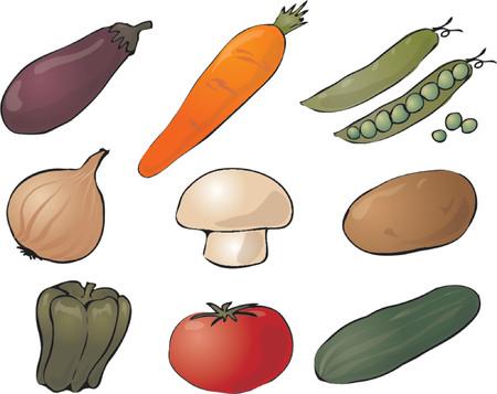 Illustration of vegetables, hand-drawn look: eggplant, carrot, peas, onion, mushroom, potato, pepper, tomato, cucumber