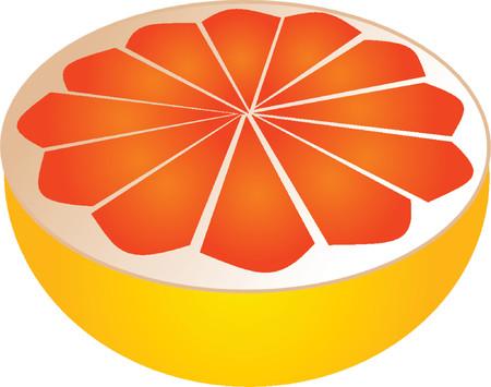 Sliced pink grapefruit illustration, 3d isometric style Vector