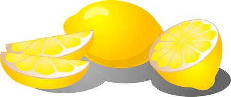 Illustration of a whole lemon, lemon segments, and sliced in half illustration