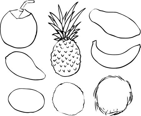 B W Lineart Illustration Of Tropical Fruits Hand Drawn Look Young Green Coconut