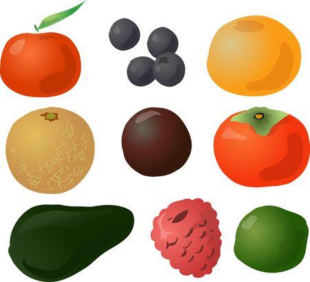 Illustration of fruits, hand-drawn look: tangerine, blueberries, grapefruit, melon, passionfruit, persimmon, avocado, raspberry, lime illustration