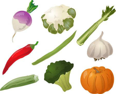 celery: Illustration of vegetables, hand-drawn look: turnip, cauliflower, celery, chilli, stringbean, garlic, okra, brocolli, pumpkin. Vector illustration Stock Photo