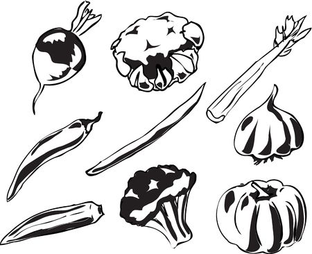 brocolli: Black & white Illustration of vegetables, hand-drawn look: turnip, cauliflower, celery, chilli, stringbean, garlic, okra, brocolli, pumpkin. Vector illustration