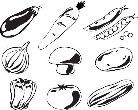 Black and white lineart Illustration of vegetables, hand-drawn look: eggplant, carrot, peas, onion, mushroom, potato, pepper, tomato, cucumber illustration