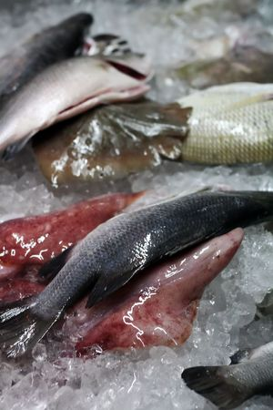 Fresh raw seafood on ice for sale Stock Photo - 1343051