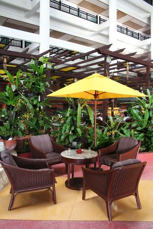 Cafe lounge in a tropical resort with vegetation