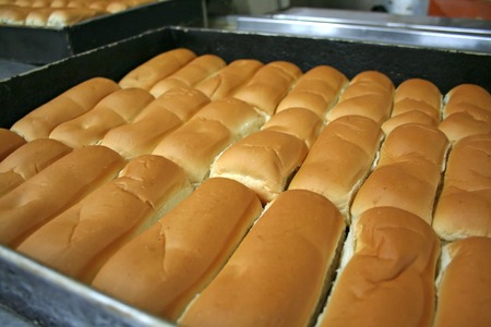 Rows of buns in a tray in a bakery photo