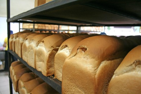 Loaves of bread arranged in rows in a bakery