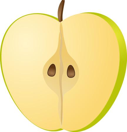 Sliced half green apple isometric illustration color gradient illustration