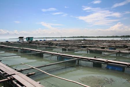 commercial fisheries: Offshore ocean open water fish farm in the tropics