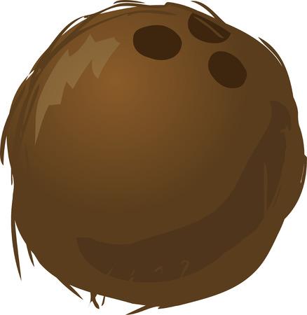 Boceto de un coco. Dibujado a mano dibujos ver ilustración  Foto de archivo - 1498989