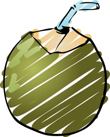 Sketch of an young green coconut. Hand-drawn lineart look illustration rough sketchy coloring illustration