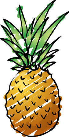 pine apple: Sketch of a pineapple. Hand-drawn lineart look illustration rough sketchy coloring Stock Photo